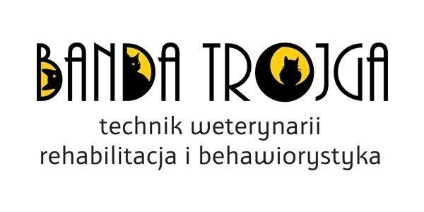 Projekt logo dla Banda trojga | branding | identyfikacja wizualna