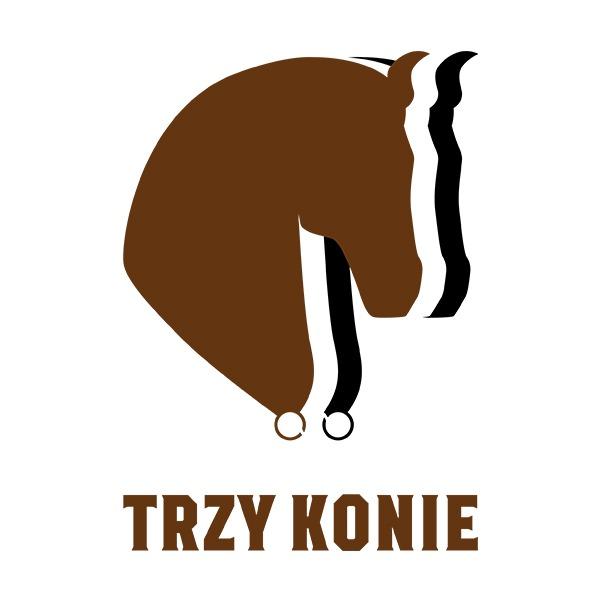 projekt logo 3 konie | branding | identyfikacja wizualna